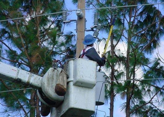Power Line Storm Restoration